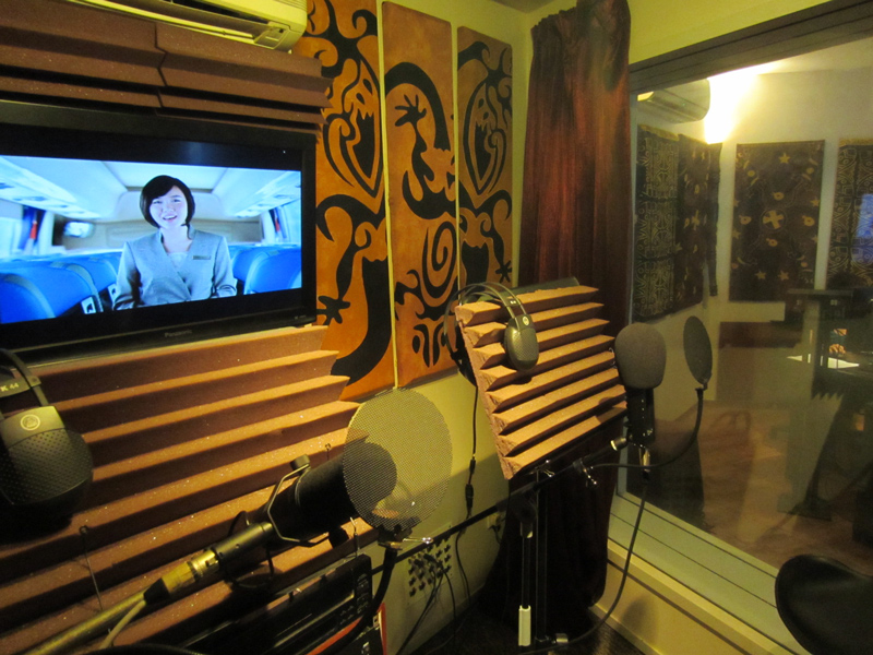 studio vocal booth acoustic treatment diffuser