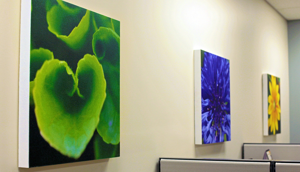 paintable panels in office